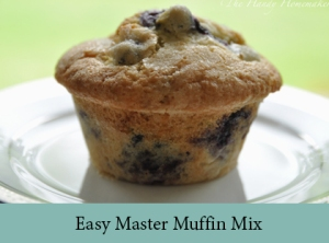 Easy Master Muffin Mix2